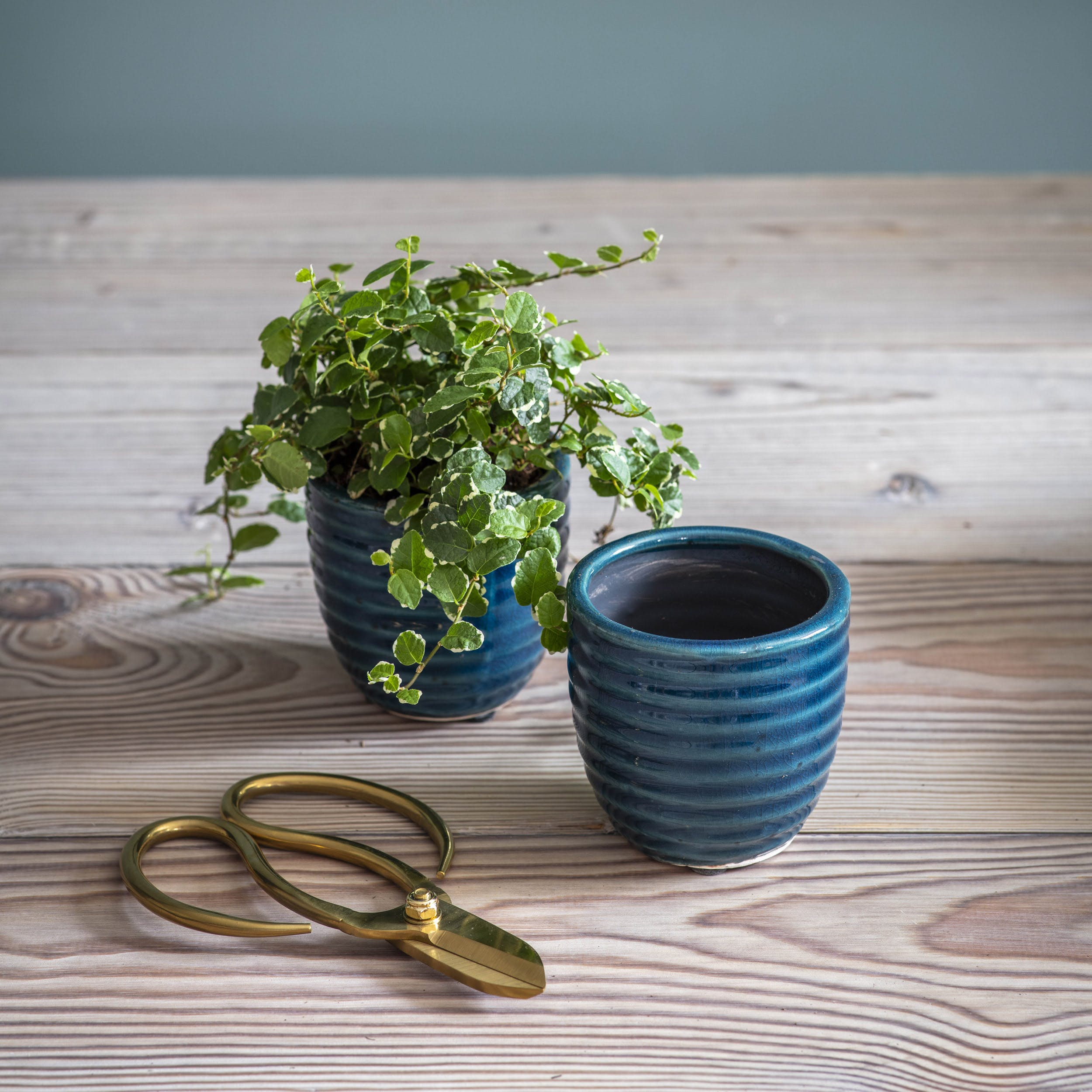 Ceramic Set of 2 Pots in Teal | Garden Trading