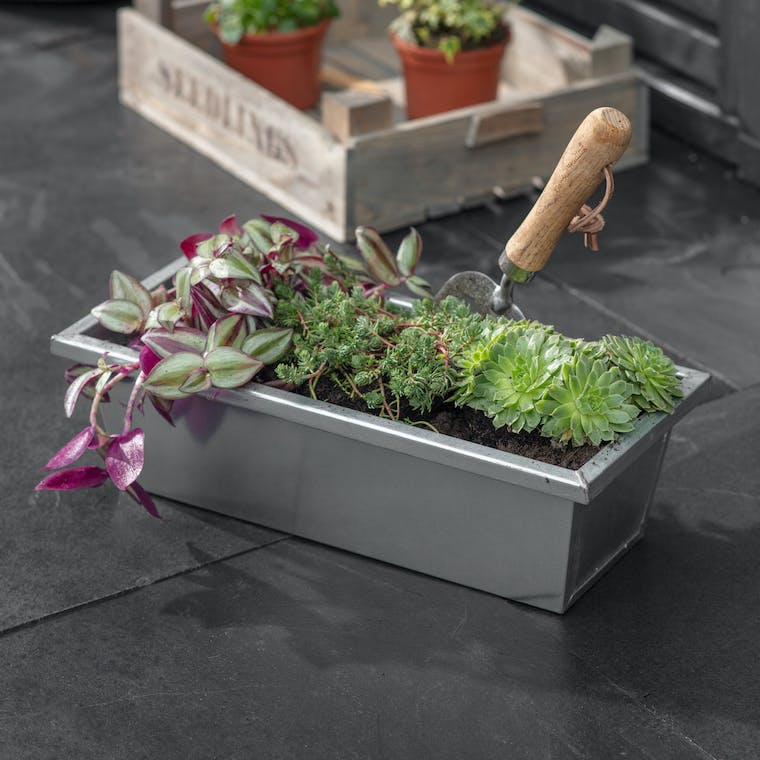 Galvanised Steel Plant Trough in Small or Large | Garden Trading