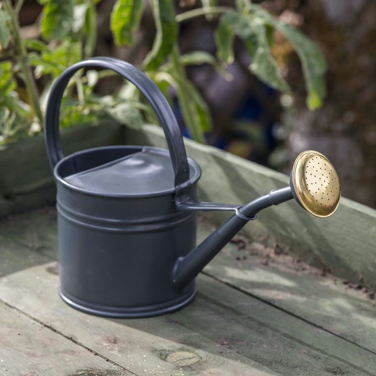 1.5 Litre Watering Can in Black | Garden Trading