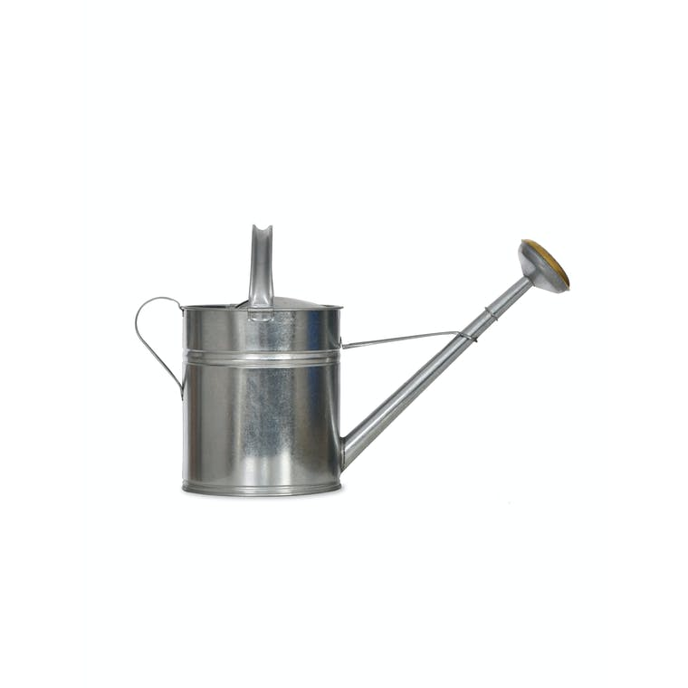 Galvanised Steel Watering Can in 1.5L, 5L or 10L | Garden Trading