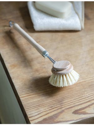Wash Up Brush
